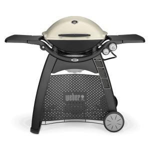 Weber Q3200 Family Q BBQ Grill In Titanium